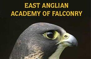 ea falconry